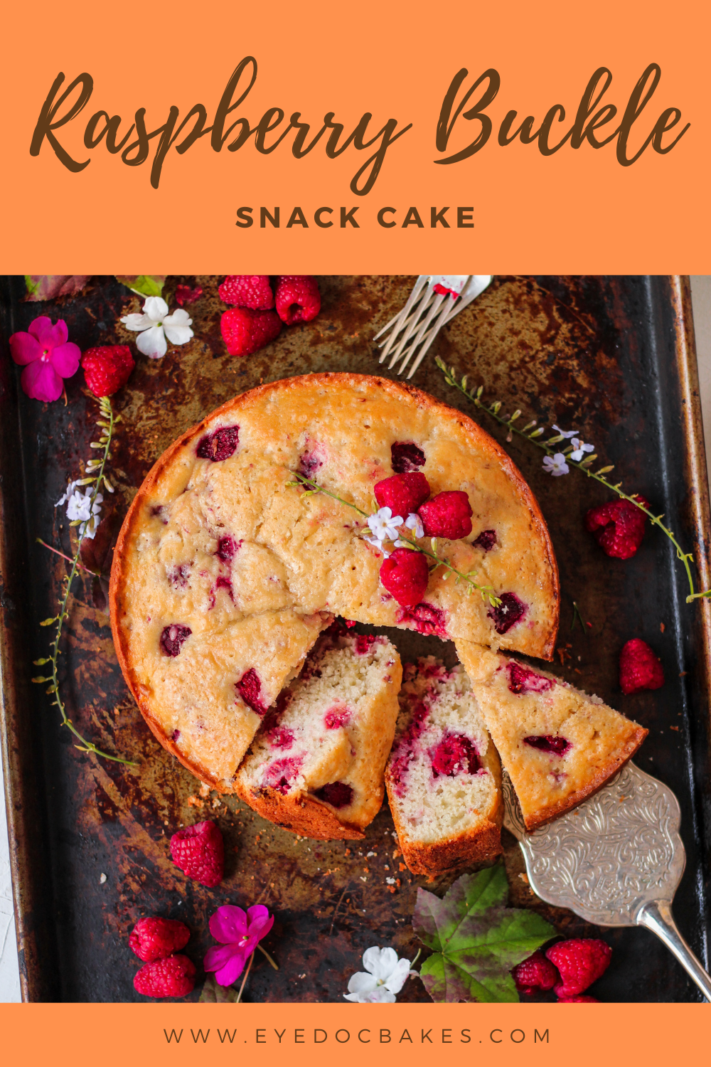 Soft and moist crumb one layer raspberry buckle snack cake