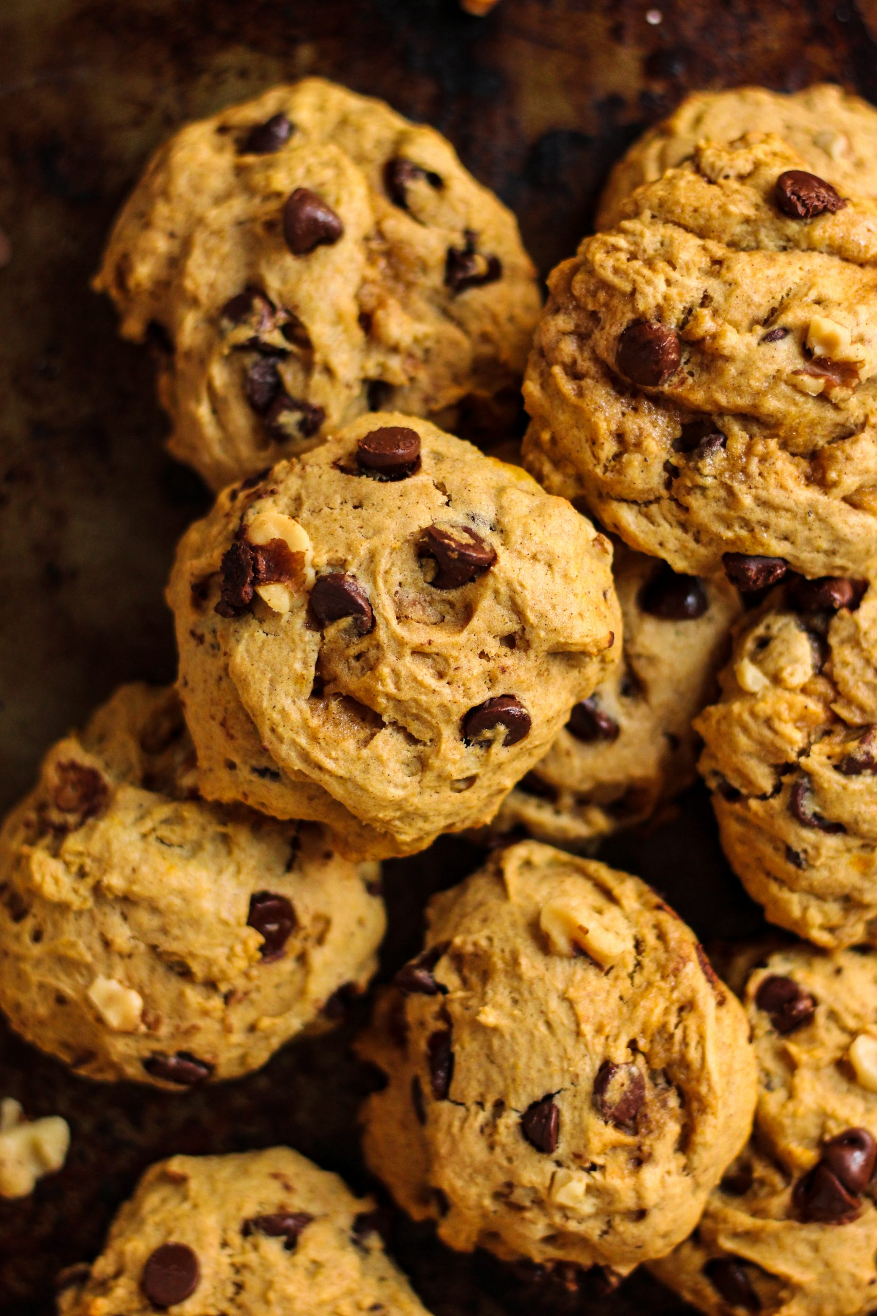 soft and thick pumpkin chocolate chip walnut cookies
